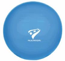 Physio- und Therapieball, Durchmesser 55 cm